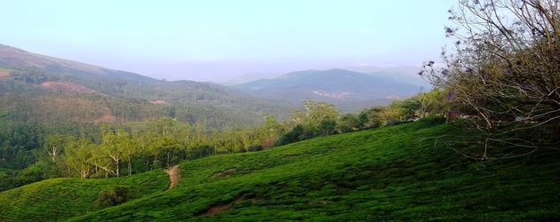 Devikulam tourist place in munnar