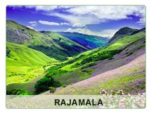 Rajamala